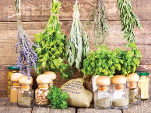 italian-restaurant-edmonton-pazzo-pazzo-herbs-blog